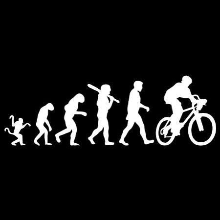Mountain Bike Evolution Decal Decal Design Shop
